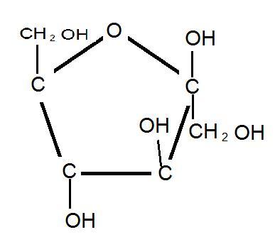 kolhydrater indelas i tre undergrupper